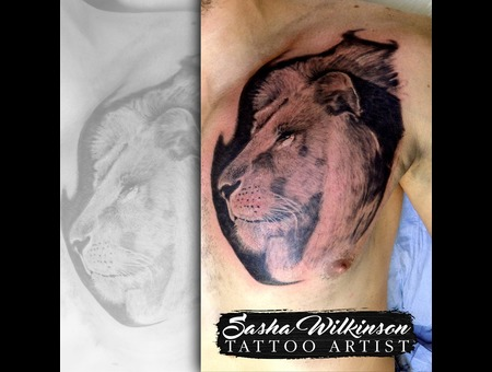 Lion Portrait  Black Grey Chest