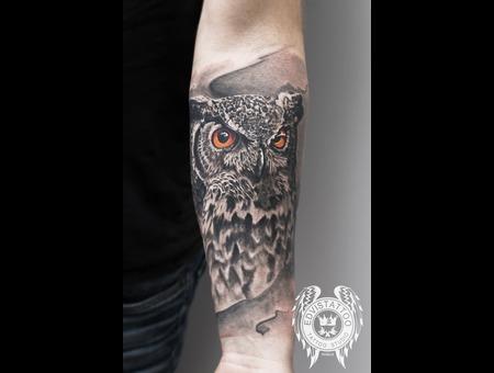 Owl Realistic Tattoo Black Grey Arm