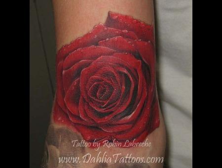Rose  Realistic  Color Color