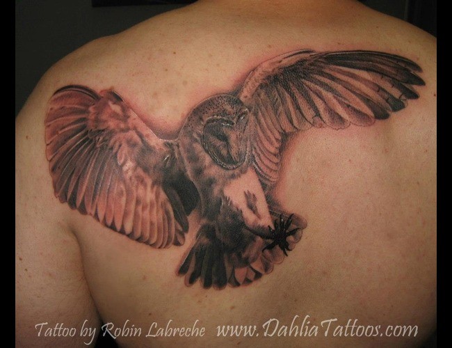 Owl  Realism  Black & Grey  Shoulder Blade Black White