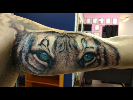 Tiger Eyes Color Arm