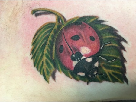 Ladybug Tattoo  Realism Color Chest