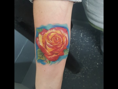 Color Rose Tattoo Realistic Tattoos Color Forearm