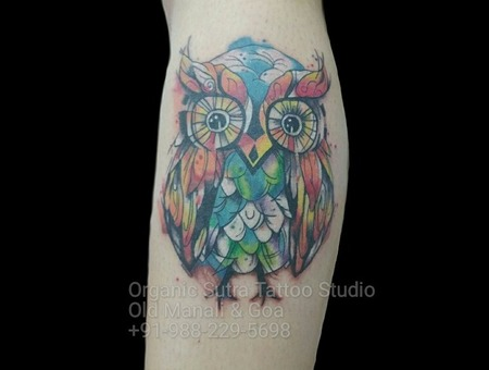 Owl  Watercolor  Abstract  Color Color Lower Leg