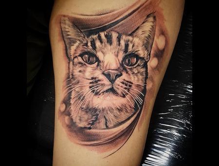 Cat Tattoo Black Grey Lower Leg