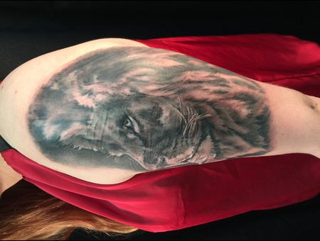 Black And Grey  Black And Gray  Lion  Portrait  Realism  Cover Up Black Grey Shoulder