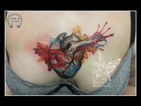 Heart  Anatomic  Aquarell  Watercolor  Paintbrush  Scribble  Color Chest