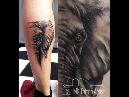 Realistic  Elephant  Portrait Black Grey Lower Leg