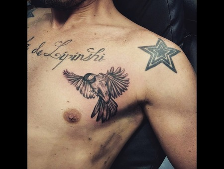 Realistic Bird  Loved Dooing This Tattoo  Black Grey Chest