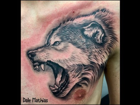 Wildlife  Wolf  Realism  Portrait  Animal Black Grey Chest