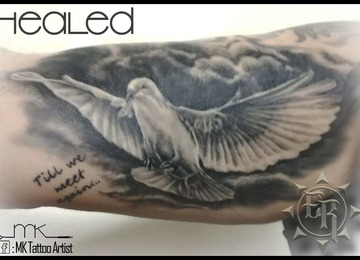 realistic, dove, memorial, healed, clouds