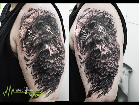Eagle  Bird  Trash  Realistic  Trashpolka  Sketch Black Grey Forearm