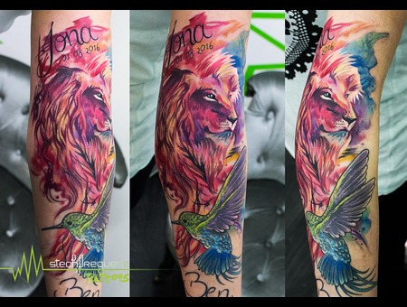 Lion  Hummingbird  Watercolor  Colors Color Arm
