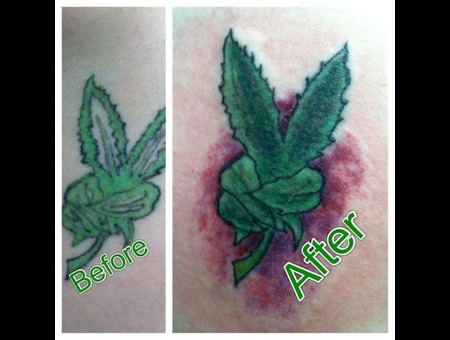 Cover Up  Pot  Color