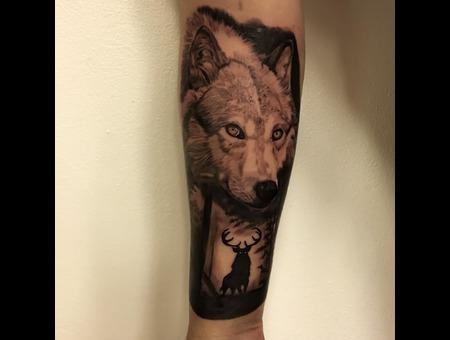 Wolf  Black Grey Forearm