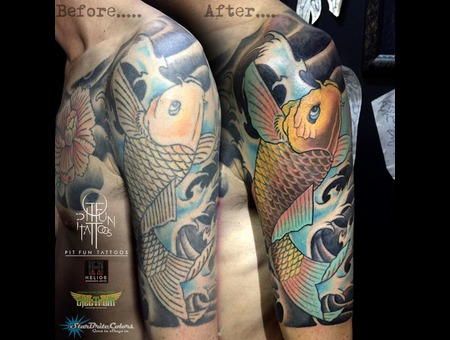 Cover Up   Koi Fish   Oriental   Japanese Color Arm