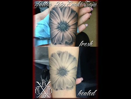 Daisy  Healed  Fresh  Floral  Flower  Flower Tattoo  Floral Tattoo Black Grey Forearm