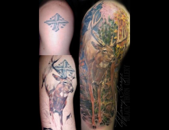 Coverup  Deer  Whitetail  Buck Color