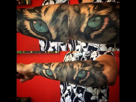 Tiger  Eyes  Realistic Color Arm