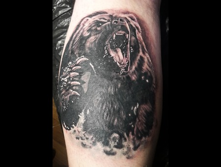 Bear  Angry  Water   Black Grey Lower Leg