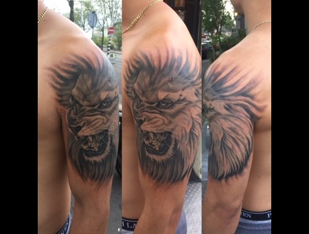 Lion  Realistic  Angry Black Grey Arm