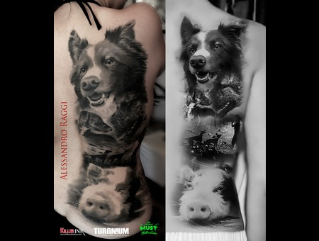 Animal Portraits Realism Black Grey Back