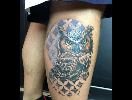 Owl  Geometric  Color  Bird  Hoot   Color Lower Leg