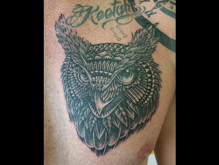 Owl  Detail  Fine Line Black Grey Chest