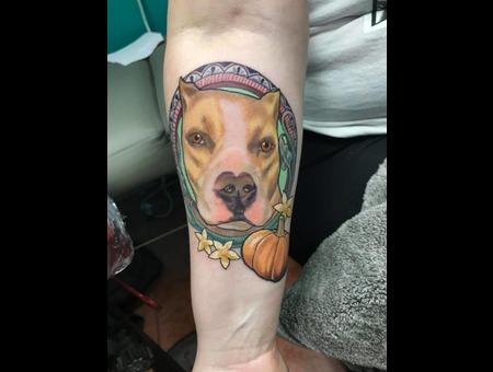 Pitbull  Pit  Dog  Tattoo  Inked  Dallas  Texas Tattoo  Pumpkin Color Forearm