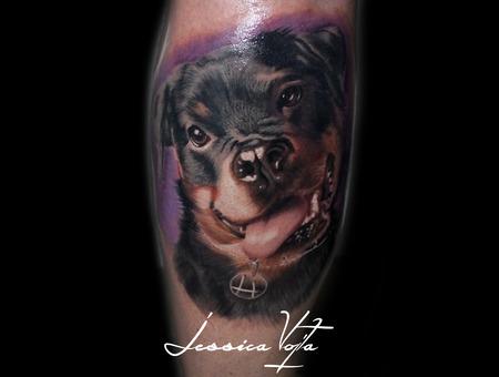 Dog  Portrait  Animal  Pet  Funny  Tongue Color Lower Leg