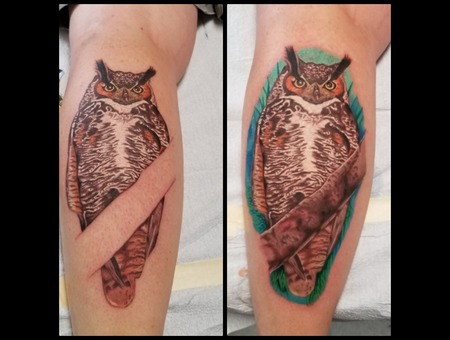 Owl Color Lower Leg