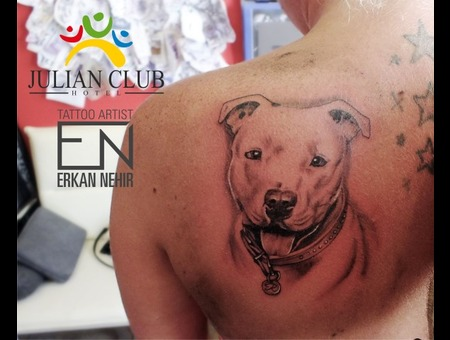 Dog Pitbull Realism Black Grey Back