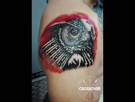 Custom  Owl  Tattoo  Animal  Paint Brushes  Realistic  Realism  Color Arm