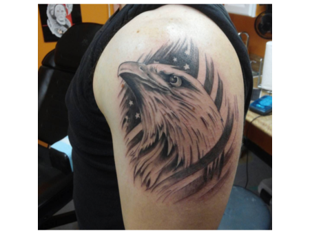 Eagle  Flag  Bird Black Grey Arm