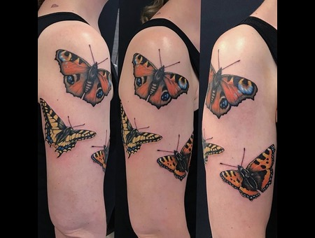 Butterfly Tattoo Color Shoulder