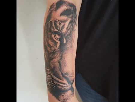 Tiger  Cat  Wildlife  Animal  Realism  Realistic Black Grey Forearm