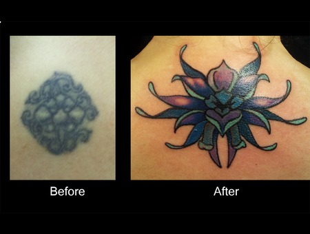 Cover Up  Flower  Color