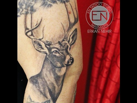 Deer  Buck  Tattoo  Tattoos  Erkan  Nehir Artist Tattooist Marmaris En Black Grey Shoulder