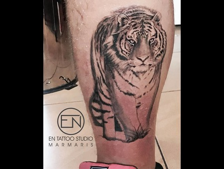 Tiger  Realism  Tattoo  Tattooist  Marmaris  Erkan  Nehir Black Grey Lower Leg