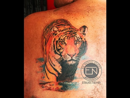 Tiger  Realism  Colored  Realistic  Tattoo  Tattoos  Erkan  Nehir  Marmaris Color Back