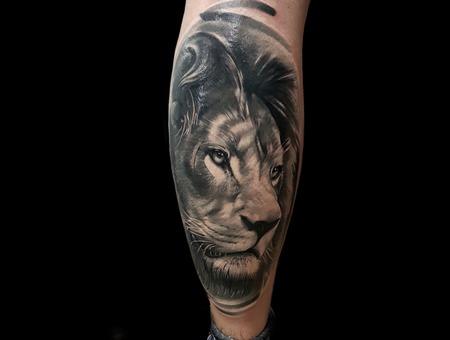 Lion Black Grey Lower Leg