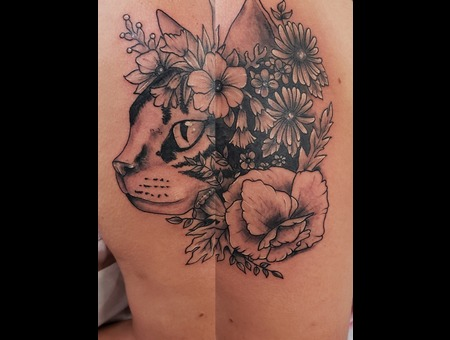 Cat  Kitty  Flower   Wildflower  Cute Black Grey Arm