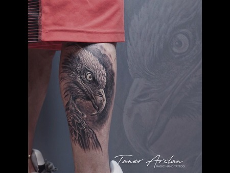 Eagle Black Grey Lower Leg