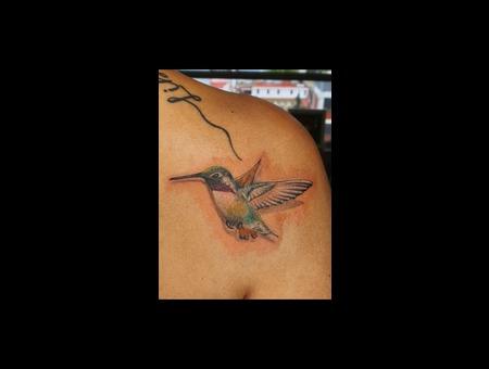3d  Realistic  Realism  Tattoo  Best   Hummingbird Color Back