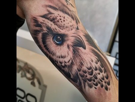 Owl  Realism  Portrait  Black Grey Arm
