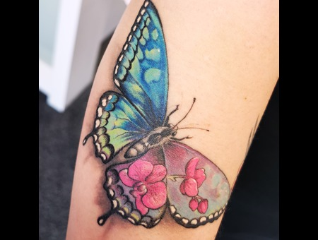 Butterfly  Colors  Flowers  Color Forearm
