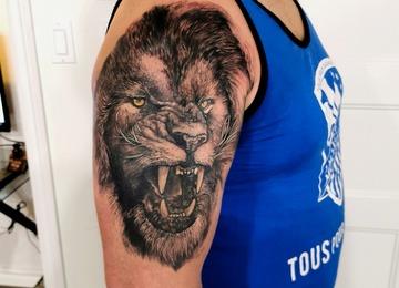 Lion #lion #realistic