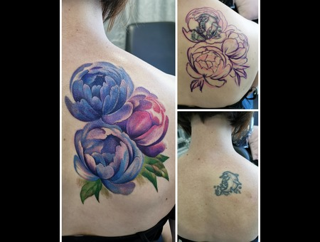 Coverup  Peony  Water Color  Color Back