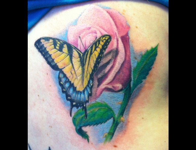 Butterfly  Rose Color