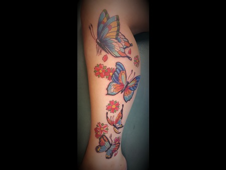 Butterflies  Flowers  Color Lower Leg